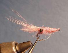 shrimp flies - Google Search