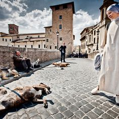 Nun and Dog Rome Italy by Heather Buckley via Redbubble.com