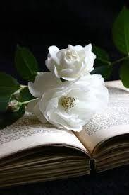 libri e fiori | books and flowers