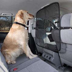 "32"" W X 32"" H, Solvit Front Seat Net Pet Barrier keeps your dog from inviting him or herself into the front seat, thus reducing driver distraction. Micro-mesh material improves driver visability and is guaranteed "";claw-proof."";"