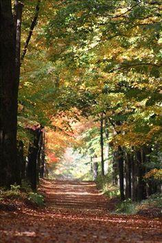 A beautiful fall day in Northern Michigan.