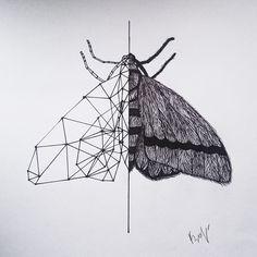 Geometric tattoo idea. Moth.
