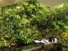 "~ ""TOTALLY AWESOME"" ~ Eco Friendly House Vertical Garden Indoor Green Walls exterior, interior & designs... Plus there's more pictures & all... ENJOY"