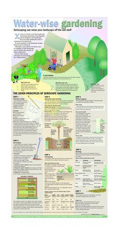 The 7 Principles of Xeriscape Gardening: Xeriscaping can wean your landscape off the wet stuff. Rain Garden, Lawn And Garden, Drought Tolerant Landscape, Garden Projects, Garden Ideas, Garden Crafts, Patio Ideas, Outdoor Ideas, Gardening Zones