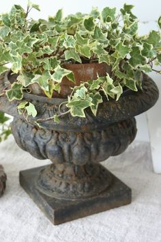 Love the ivy in the urn...just goes together