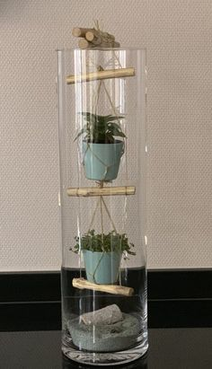 "Tall glass vase with rope ladder and mini plants - living acce .-Hohe Glasvase mit ""Strickleiter"" und Minipflanzen – Wohnaccessoires Tall glass vase with ""rope ladder"" and mini plants -"