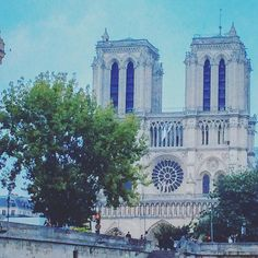 Looking back to my Paris explorations #notredame #tbt