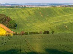 Co navštívit na jižní Moravě? 83 tipů na nejkrásnější místa 🏰 Vineyard, Travel, Outdoor, Decor, Outdoors, Viajes, Decoration, Vine Yard, Destinations