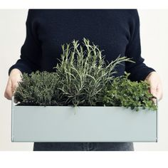 Ferm Living Plant Box Dusty Blue. Pretty contemporary  window box for small spaces.