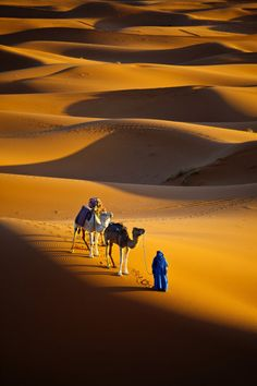 Sahara desert, Morocco (think about walking in the desert with your camel like this--it's hard for me to comprehend). Desert Dunes, Desert Sahara, Gobi Desert, Places To Travel, Places To See, Places Around The World, Around The Worlds, Wonderful Places, Beautiful Places