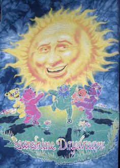 Vtg 1995 The Grateful Dead Sunshine Daydream T-Shirt L Tie Dye The Mountain Vintage Rock Tees, Tennessee River, Grateful Dead, Daydream, Musicals, Graphic Tees, Sunshine, Tie Dye, T Shirt