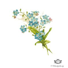 Vintage Blue Bell floral Illustration tattoo par WickedlyLovelyArt