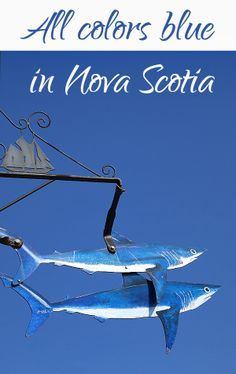 Great Pictures of #NovaScotia #Canada at its bluest!
