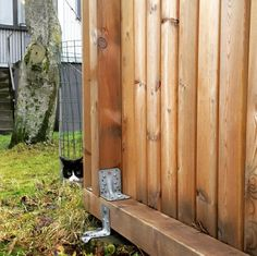 """430 Likes, 15 Comments - Adaliina - Iceland (@embracedbythenorth) on Instagram: """"Spotted in downtown Reykjavík today: a super cute and sneaky spy-cat 🙊 #embracedbythenorth #iceland…"""""""