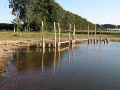 Balanceerparcours in het water in Park Uden Zuid #speeltoestel #natuurlijkspelen #waterspel #balanceren #klimmen #klauteren SICURO Modulaire Speeltoestellen www.sicuro.nl