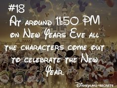 Happy New Years from Disneyland and all of the characters.