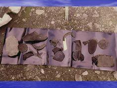 Navío San Telmo - La fotografía muestra restos de zapatos y hebillas españolas encontradas en isla Negra