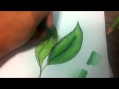Colored Pencils: Shading Tutorial