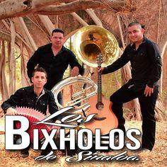 Los Bixholos de Sinaloa - Historias de Amor : Canciones en estudio 2013 - Sinaloa-Mp3