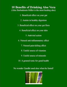 10 benefits of drinking aloe vera - no wonder so many people ignore the 'unusual' taste!