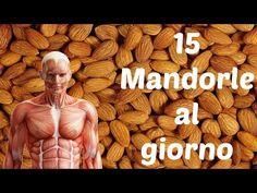 Ecco Cosa Accade se Mangi 15 Mandorle ogni GIORNO - YouTube