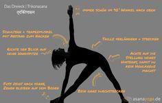 Trikonasana ist eine Yoga Übung, die Energielinien entlang der Beine, Hüfte und Arme aktiviert. Das fördert die Vitalität des Körpers. Jetzt ansehen!