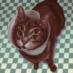 """Casey Weldon - """"Bento"""" an acrylic painting, part of Casey Weldon's solo exhibition, """"Meow Brow"""" on view at Spoke Art Gallery in San Francisco September 2013."""
