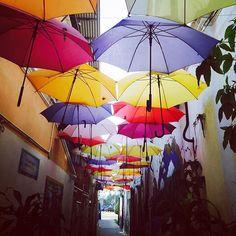 Photos from instagram Profile : #kampung #china #chinese #chinatown #malaysia #malaisie #malaysia #malaisian #kualaterengganu #terengganu #French #français #streetart #parapluie #umbrella #vacances #travel #tourism