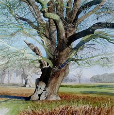 Ian Sidaway WATERCOLOR #tree #art #watercolor jd