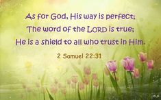 II Samuel 33 As for God, His way is perfect; The word of the Lord is proven; He is a shield to all who trust in Him. God is my strength and power, And He makes my way perfect. Biblical Quotes, Spiritual Quotes, Bible Quotes, Art Quotes, Showers Of Blessing, 2 Samuel, Favorite Bible Verses, Scripture Verses, Life Verses