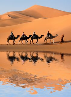 Riding through the Sahara Desert  #travel #morocco #holiday #budgettravel #africa #sahara #desert
