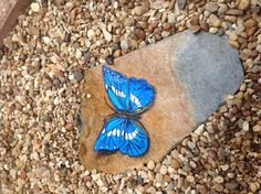 Blue Butterfly Hand Painted on Slate Garden by PaintingsbyDe