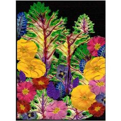 Trademark Art Story Book Forest Canvas Art by Kathie McCurdy, Size: 14 x 19, Multicolor