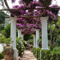 Italie-Riviera-Capri-Jardin-Merci-Gaspard00.jpg (580×580)