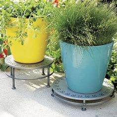 Festive Large Yellow Planter | Crate and Barrel