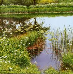 Galleries in Carmel and Palm Desert California - Jones & Terwilliger Galleries - David Smith Landscape Photos, Landscape Art, Landscape Paintings, Landscape Photography, David Smith, Michael James Smith, Palm Desert California, Garden Photos, Painting Videos
