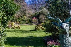 Our beautiful gardens! Perfect for outdoor wedding ceremonies, drinks receptions and parties! Wedding Ceremonies, Receptions, Beautiful Gardens, Acre, Woodland, Ireland, Wedding Planning, Parties, Drinks