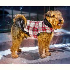 "Kabátek pro psa ""Charlie"" S | Magnet 3Pagen #magnet3pagencz #3pagen #animals"