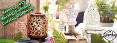 #Spring #Summer #Scentsy #2017 #NewCatalog #OutNow #SpringandSummer #Wickless #GoWickless #Catalogs #Idreamofscentsy