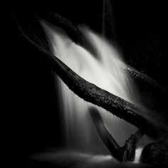 Kneeling / Alexandru Crisan / Photography, Miscellaneous