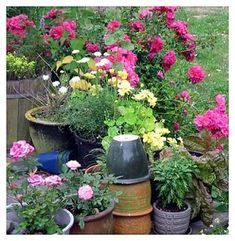 Gardening Advice To Turn Your Brown Thumb Green – World of Gardening Container Plants, Container Gardening, Container Design, Organic Gardening Tips, Living At Home, Healthy Snacks For Kids, Types Of Plants, Garden Planters, Garden Planning