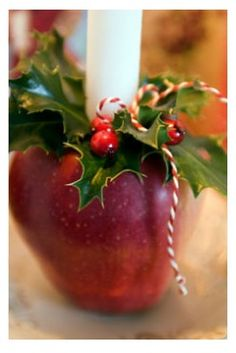 DIY christmas candle holder apple.  use for christmas dinner, then the day after, cut them up and simmer them on the stove in water with some cinnamon and/or cloves to enjoy them two days in a row!