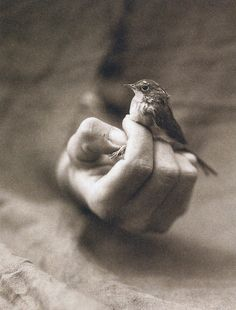 ♥ I love this photo, the strength of men and also his gentleness.  (photographer Victor Schrager)