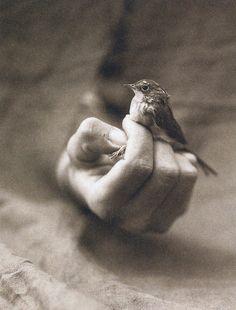 (photographer Victor Schrager)