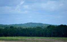 A big hill in Mississippi. We don't call them mountains. Photo - m.murphree Google Photos