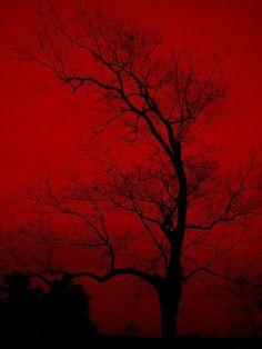 red sky & sunset