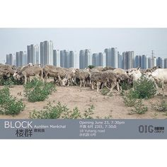 """Hi Friends in Shanghai! I'm pleased to announce my first exhibition in China: """"Block"""" will be shown at the Original Identity Gallery from June 23 to July 21. The opening is on Friday 23rd of June at 7:30pm. Go visit ;) #exhibition #block #china #shanghai #landscape #cityscape"""