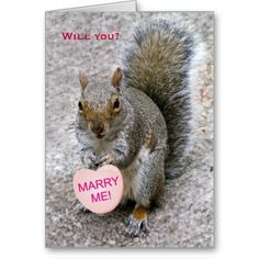 Valentine's Squirrel holding a heart with the words Marry Me!  Inside Text: Be mine...on Valentine's Day and every day!  All text is customizable!
