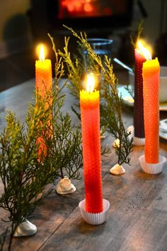 winter solstice traditions -- feed the wildlife, make candles, make wreaths, hang mistletoe, eat by candlelight, release the old and welcome the new.  Lots of pics on each activity