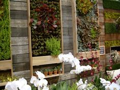 Backyard Vertical Garden- could we do a little veggie/herb garden against one wall of the garage by the patio?  Would we even want to?